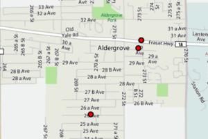 aldergrove-bed-bugs