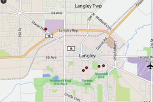 Langley-bed-bugs